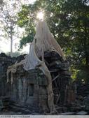 吳哥窟  Angkor Wat 浮光掠影:吳哥窟寶劍寺 Preah Khan-P1000154.JPG