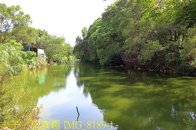 IMG_8189-1.jpg - 桃園平鎮 石門大圳過嶺步道 陂塘迷宮 20200922