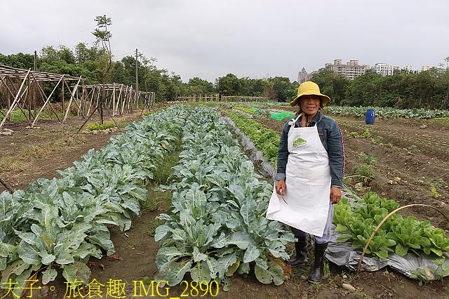 IMG_2890.jpg - Lipahak 三峽野菜農園 20201114