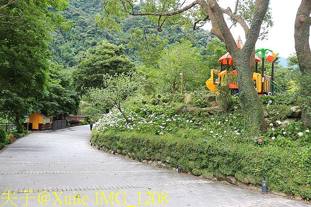IMG_1208.jpg - 苗栗 南庄雲水度假森林 20190603