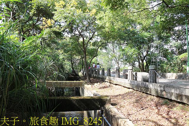 IMG_8245.jpg - 桃園平鎮 石門大圳過嶺步道 陂塘迷宮 20200922