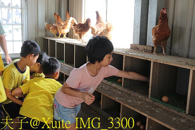 IMG_3300.jpg - 食農教育青農青創示範基地 20191017