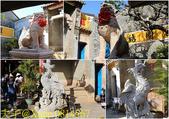 越南 會安古鎮 20200123:0814567.jpg