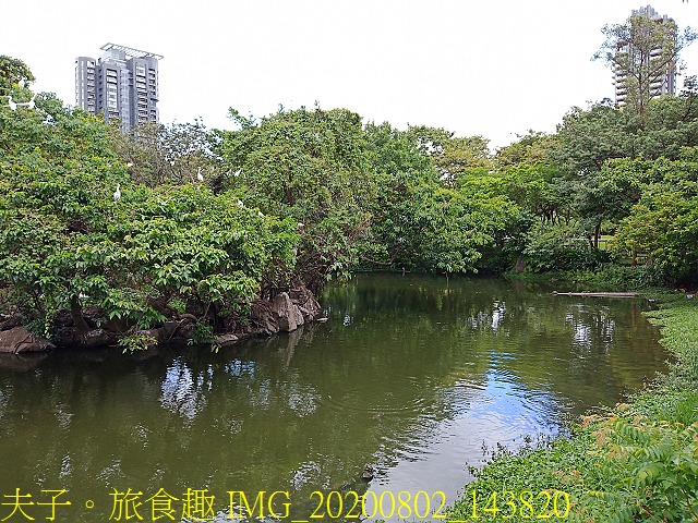 IMG_20200802_143820.jpg - 台北市大安森林公園 20200802
