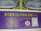 金車生物科技水產養殖研發中心─ CAS 鮮蝦養殖場 :P1140205.jpg