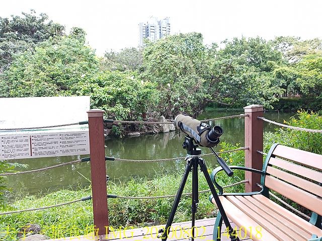 IMG_20200802_144018.jpg - 台北市大安森林公園 20200802