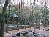 桃園市虎頭山公園整修完成+楓香紅了 2011/01/13:P1110964.JPG
