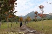 2014楓石門 野餐日 (桃園石門水庫 南苑公園) 2014/12/13:IMG_9642.jpg