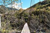 軍艦岩吊橋,尖石鄉秀巒全新景點 (秀巒道路 5K處)。 20160107:CHU_1510.jpg