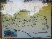 林口新林步道拍五楊高架車軌 2013/05/25:IMG_1733.jpg