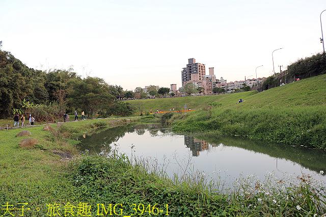 IMG_3946-1.jpg - 內湖大溝溪生態園區 春節走春看花海 20210131