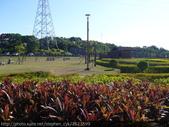 一條挑戰級單車道-桃園市虎頭山環保公園 20090926:P1040545.JPG
