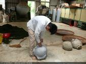台式綠茶製作 2 - 揉捻成型 (包布球.平揉.解塊):P1100678.JPG