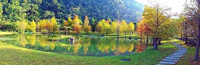 苗栗 南庄雲水度假森林 20190603 :南庄雲水度假森林 FB 照片-1.jpg