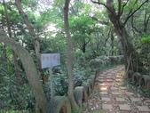 林口新林步道拍五楊高架車軌 2013/05/25:IMG_1736.jpg