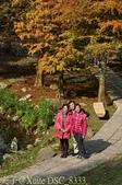 2014楓石門 野餐日 (桃園石門水庫 南苑公園) 2014/12/13:DSC_8333.jpg
