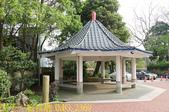 新竹橫山 大山背 樂善堂 20200325:IMG_2369.jpg