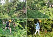 泰國普吉泰山森林滑翔園區,叢林飛躍體能挑戰 42關 20160208 :IMG_6811171820.jpg
