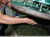桃映紅茶製作初體驗 2010/08/29 :P1090502.JPG