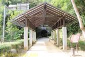 桃園大溪 舊百吉隧道 :IMG_8353.jpg