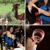 澳洲黃金海岸 Mt. Nathan Winery 品酒 2013/02/09:相簿封面