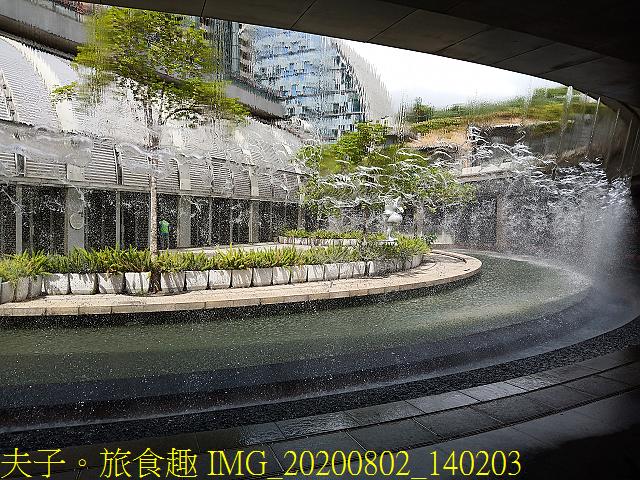 IMG_20200802_140203.jpg - 台北市大安森林公園 20200802