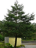 台北坪林石雕公園:P1110217.JPG