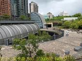 台北市大安森林公園 20200802:IMG_20200802_140727.jpg