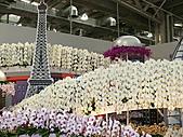 2011/04/24 花博倒數第二天, 最後的一個週日, 天氣晴, 人人山人海:P1020618.JPG