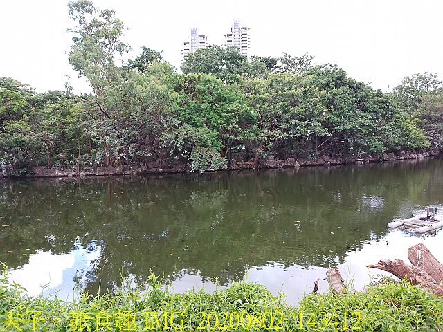 IMG_20200802_143412.jpg - 台北市大安森林公園 20200802