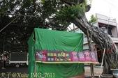 嘉義鹿草中寮安溪城隍廟盤天樹 2013/08/11:IMG_7611.jpg