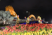 越南峴港 APEC 公園 20200122:IMG_0364.jpg