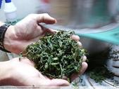 桃映紅茶製作初體驗 2010/08/29 :P1090506.JPG