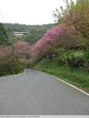 汐止彌勒山天道清修院 2011/03/14 :P1010713.JPG