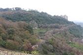 2014楓石門 野餐日 (桃園石門水庫 南苑公園) 2014/12/13:IMG_9961.jpg