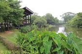 桃園市八德埤塘自然生態公園 20150501:IMG_8414.jpg
