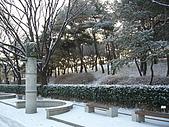 Korea 韓國 下雪 2009/01/23-27 :P1020947.JPG