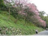 汐止彌勒山天道清修院 2011/03/14 :P1010707.JPG