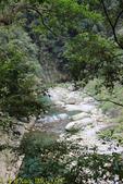 花蓮太魯閣景點 砂卡礑步道 20190206:IMG_3378.jpg