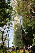 越南 峴港 五行山 20200125:IMG_1334.jpg