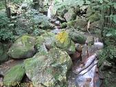 陽明山絹絲瀑布 2013/09/09:IMG_4316.jpg