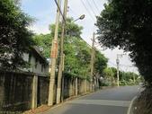 林口新林步道拍五楊高架車軌 2013/05/25:IMG_1721.jpg
