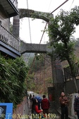 谷關捎來步道 谷關七雄老四-波津加山步道 暖身路段 20150221:IMG_3539.jpg