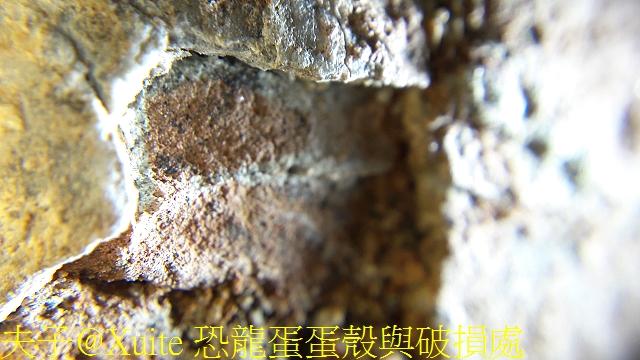 恐龍蛋蛋殼與破損處.jpg - [玩古。古玩] 恐龍蛋 化石  2018/04/02