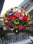 Korea 韓國 下雪 2009/01/23-27 :P1030015.JPG