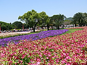 2011/04/24 花博倒數第二天, 最後的一個週日, 天氣晴, 人人山人海:P1020505.JPG