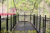 巴陵橋假日廣場 20190330:IMG_6413 鐵線橋.jpg