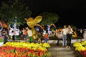 越南峴港 APEC 公園 20200122:IMG_0369.jpg