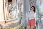 越南 峴港 粉紅教堂 峴港大教堂 20200123:IMG_0539.jpg