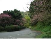 汐止彌勒山天道清修院 2011/03/14 :P1010723.JPG